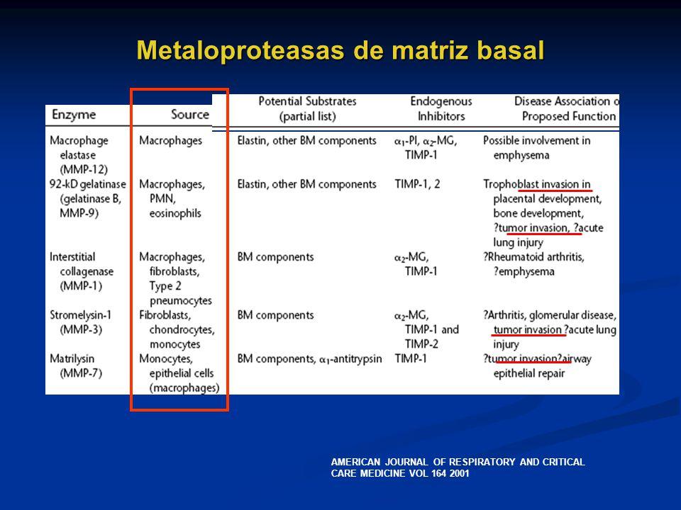 Metaloproteasas de matriz basal
