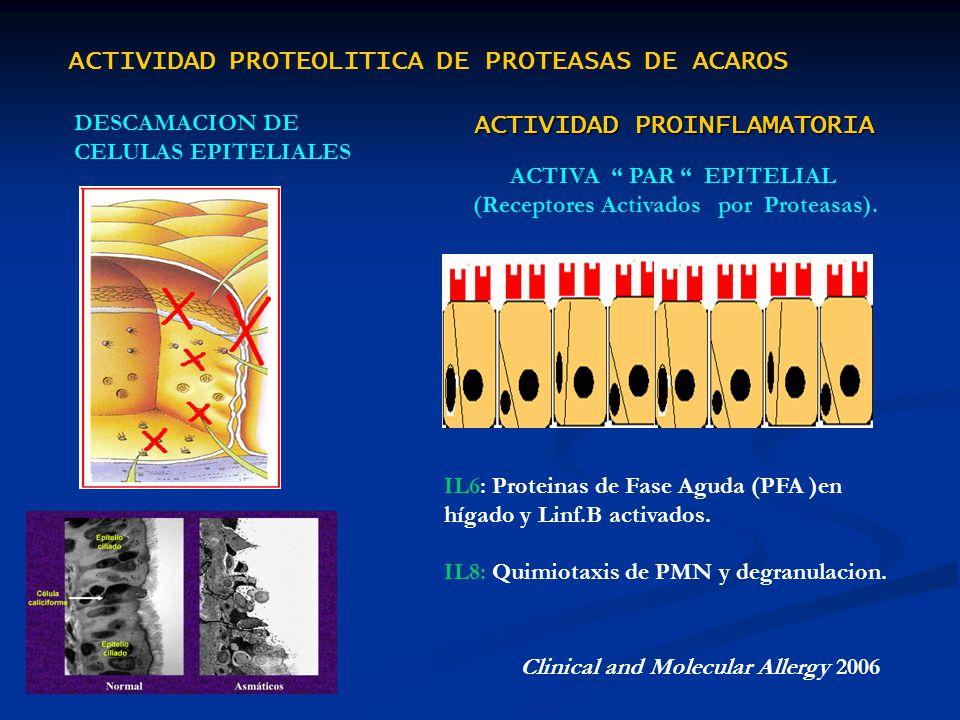 ACTIVA PAR EPITELIAL (Receptores Activados por Proteasas).
