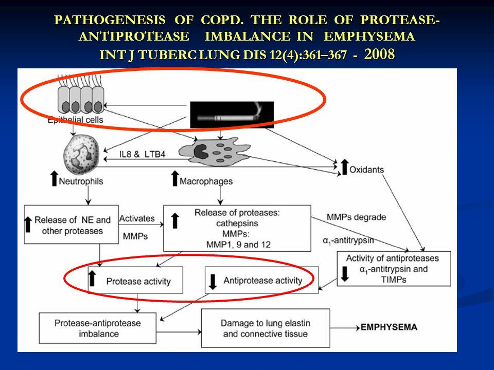 PATHOGENESIS OF COPD.