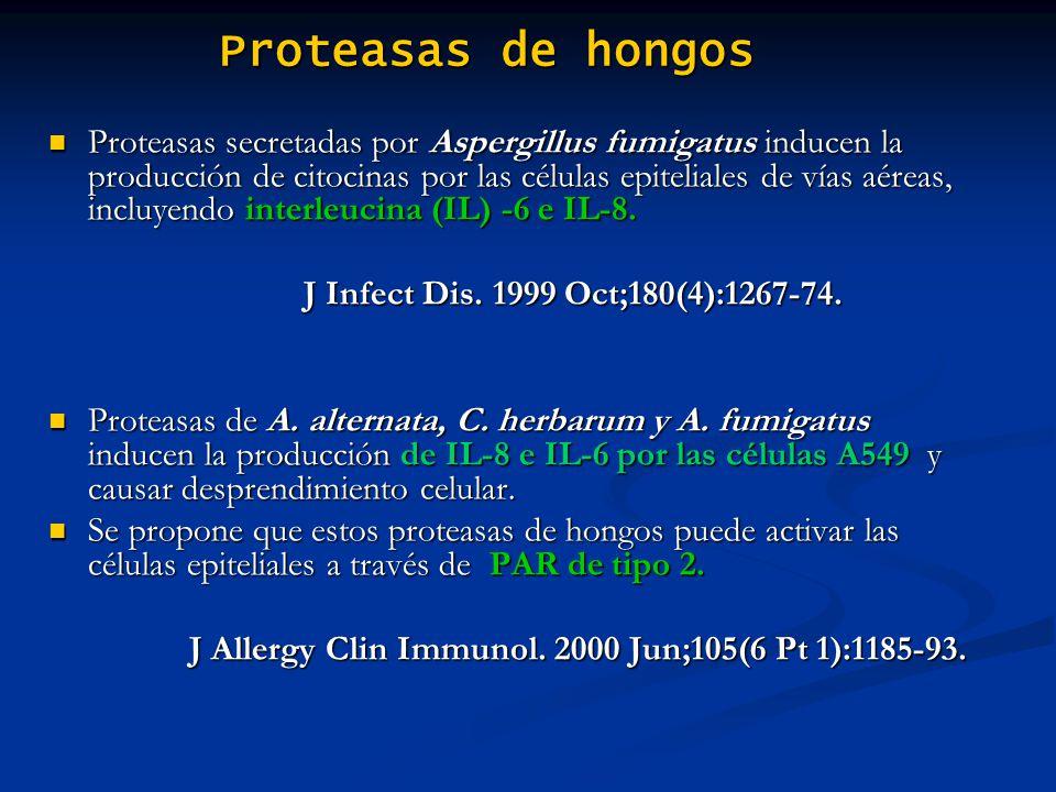 Proteasas de hongos