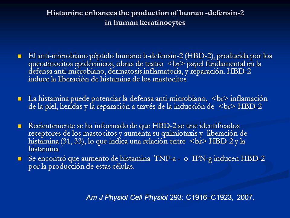 Histamine enhances the production of human -defensin-2 in human keratinocytes
