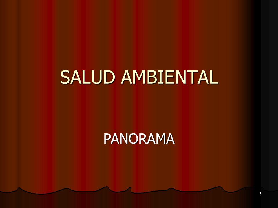 SALUD AMBIENTAL PANORAMA DR. HUGO RENGIFO