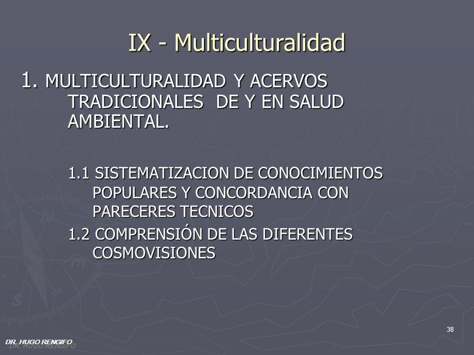 IX - Multiculturalidad