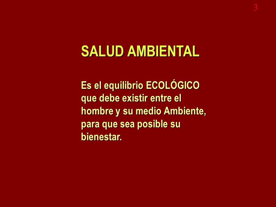3 SALUD AMBIENTAL. Es el equilibrio ECOLÓGICO que debe existir entre el hombre y su medio Ambiente, para que sea posible su bienestar.