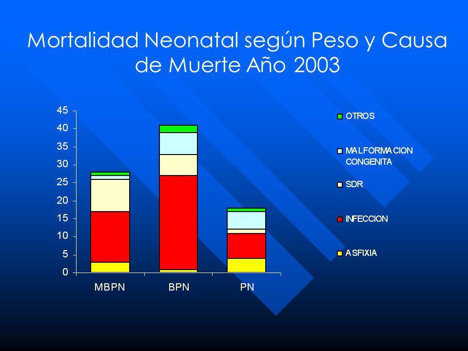 Mortalidad Neonatal según Peso y Causa de Muerte Año 2003