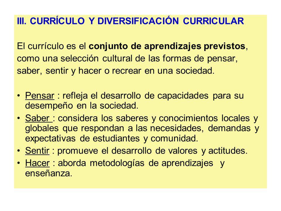 III. CURRÍCULO Y DIVERSIFICACIÓN CURRICULAR
