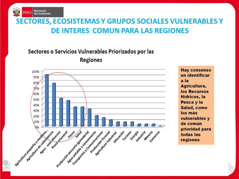 SECTORES, ECOSISTEMAS Y GRUPOS SOCIALES VULNERABLES Y DE INTERES COMUN PARA LAS REGIONES