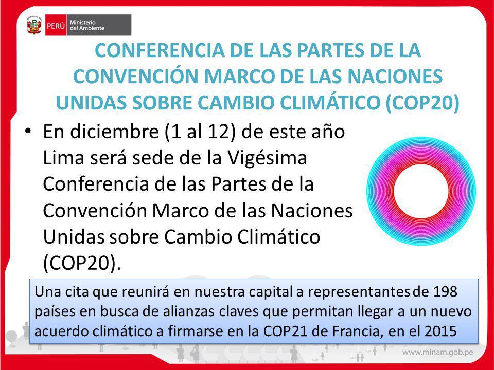 CONFERENCIA DE LAS PARTES DE LA CONVENCIÓN MARCO DE LAS NACIONES UNIDAS SOBRE CAMBIO CLIMÁTICO (COP20)