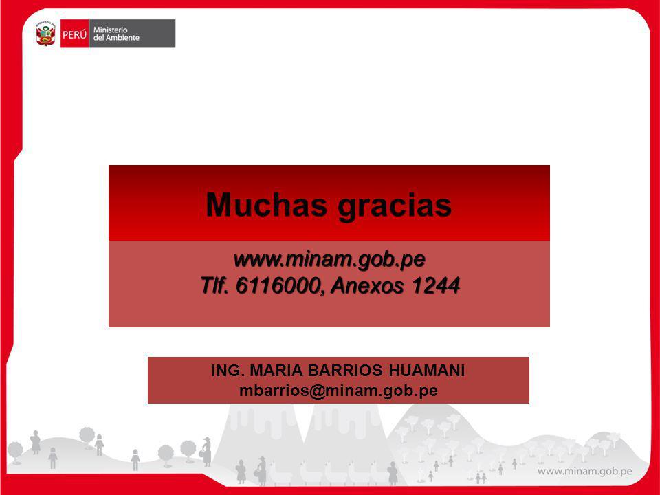 ING. MARIA BARRIOS HUAMANI
