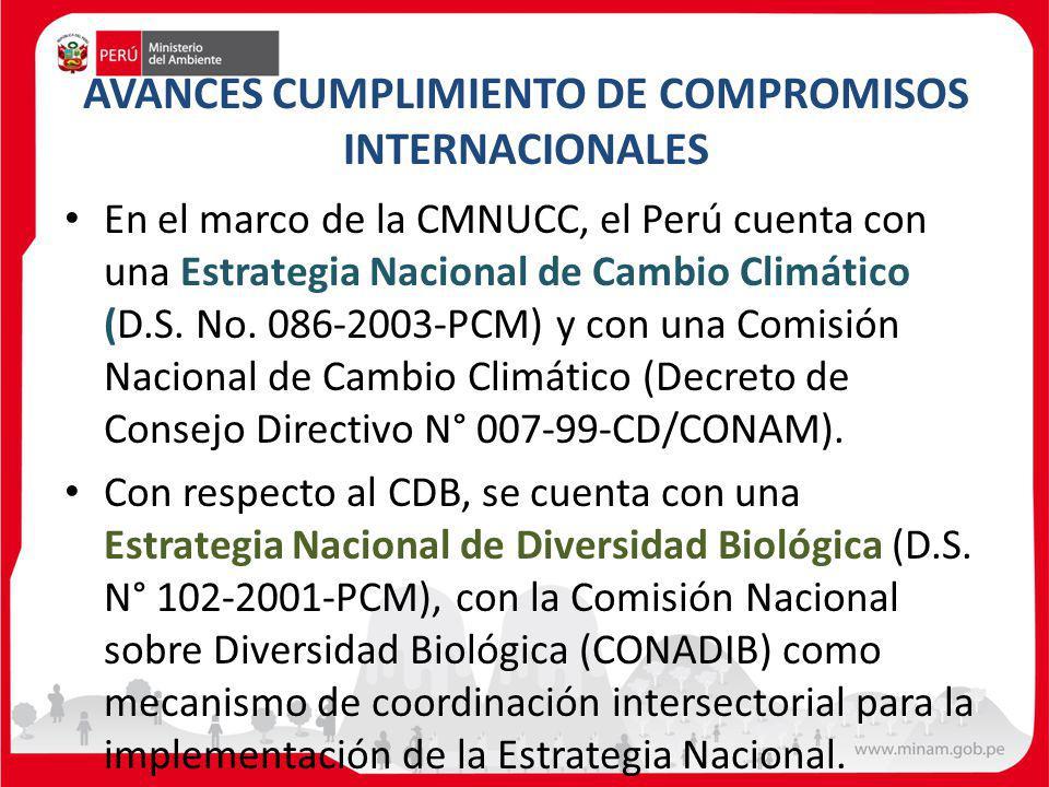 AVANCES CUMPLIMIENTO DE COMPROMISOS INTERNACIONALES