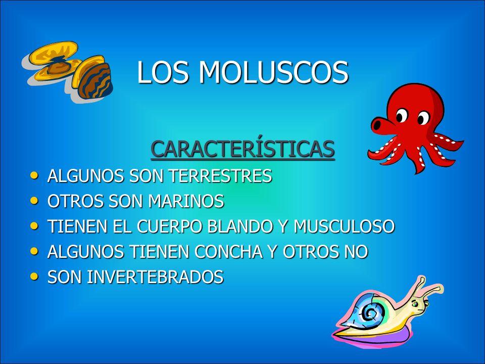 LOS MOLUSCOS CARACTERÍSTICAS ALGUNOS SON TERRESTRES OTROS SON MARINOS