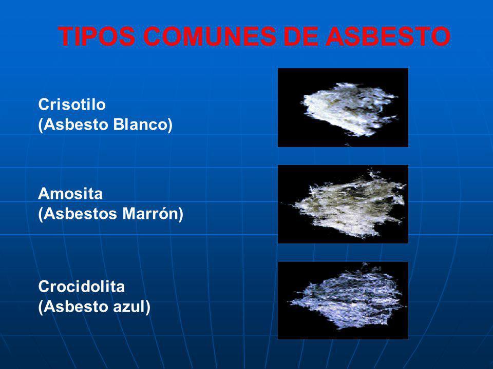 TIPOS COMUNES DE ASBESTO
