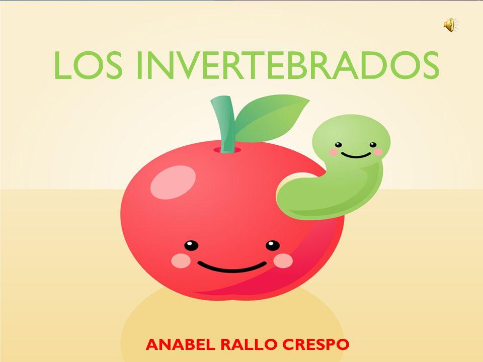 LOS INVERTEBRADOS 4 ANABEL RALLO CRESPO
