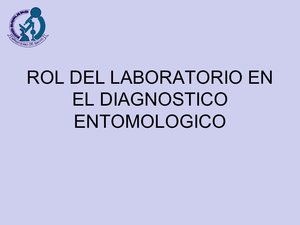 ROL DEL LABORATORIO EN EL DIAGNOSTICO ENTOMOLOGICO