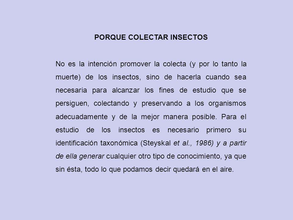 PORQUE COLECTAR INSECTOS