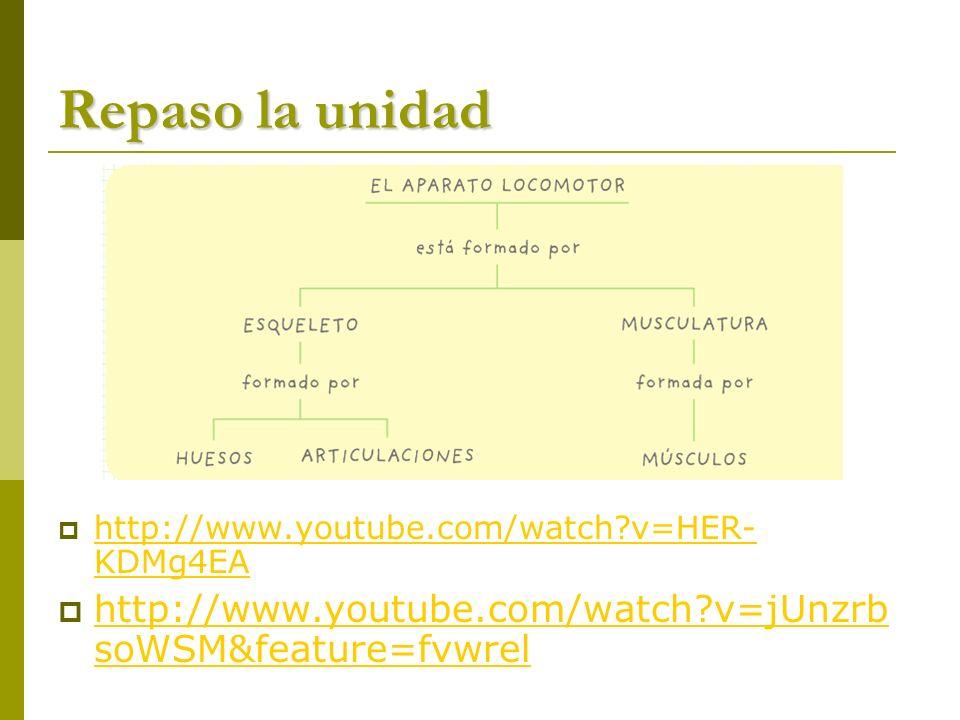 Repaso la unidad http://www.youtube.com/watch v=HER-KDMg4EA.