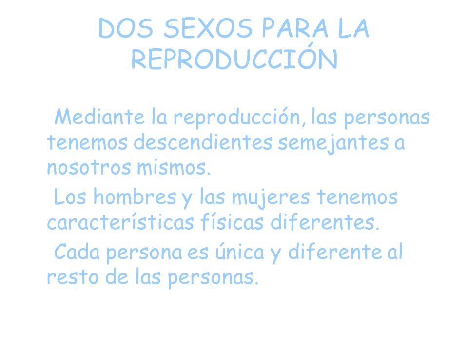 DOS SEXOS PARA LA REPRODUCCIÓN