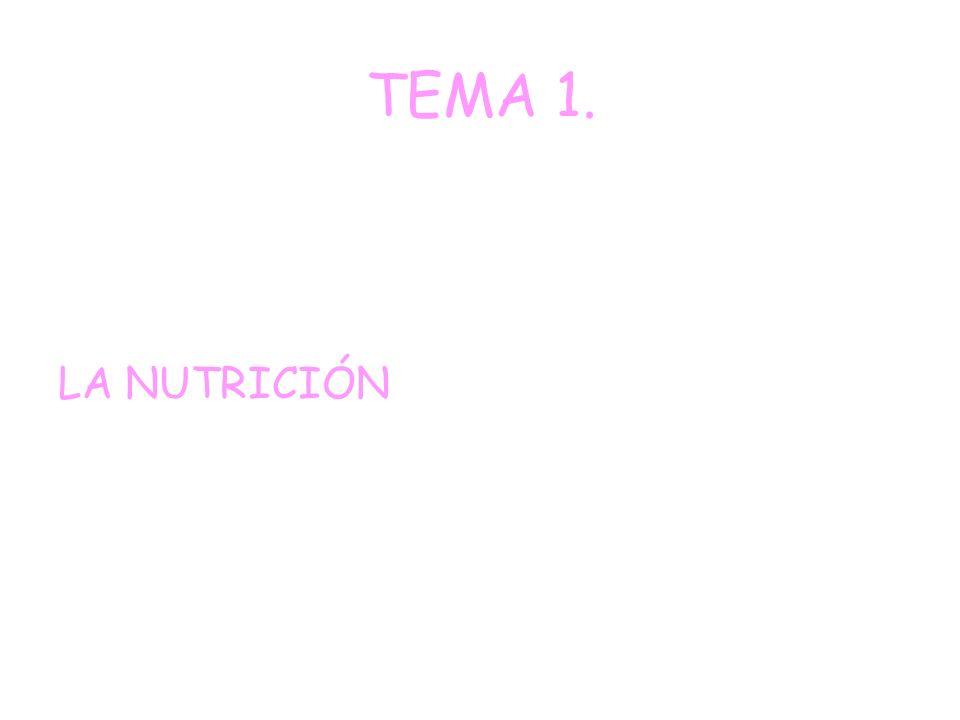 TEMA 1. LA NUTRICIÓN