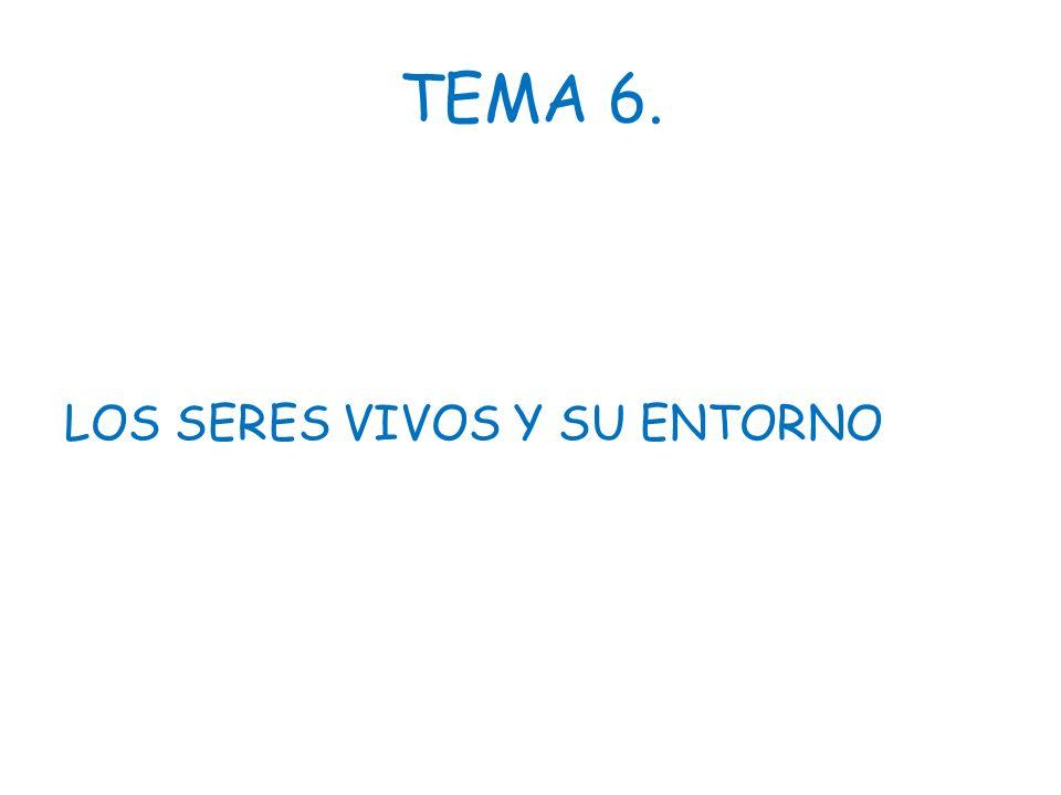 TEMA 6. LOS SERES VIVOS Y SU ENTORNO