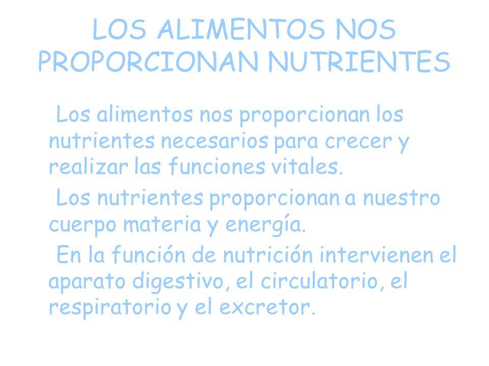 LOS ALIMENTOS NOS PROPORCIONAN NUTRIENTES