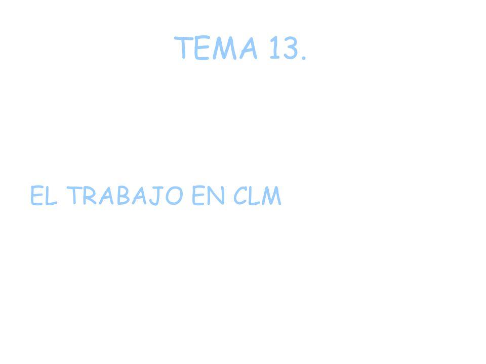 TEMA 13. EL TRABAJO EN CLM