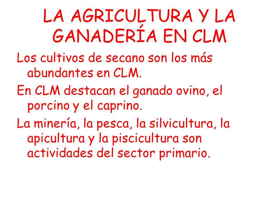 LA AGRICULTURA Y LA GANADERÍA EN CLM