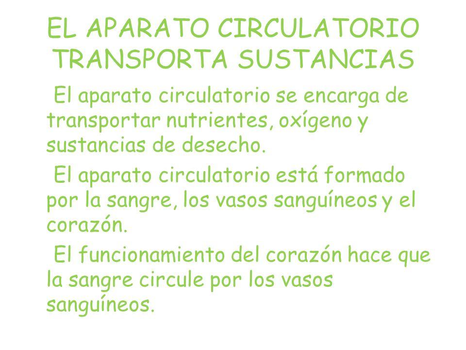 EL APARATO CIRCULATORIO TRANSPORTA SUSTANCIAS