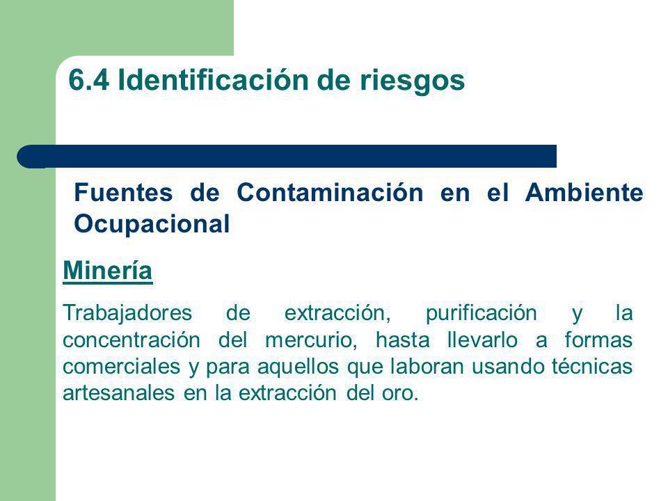 6.4 Identificación de riesgos