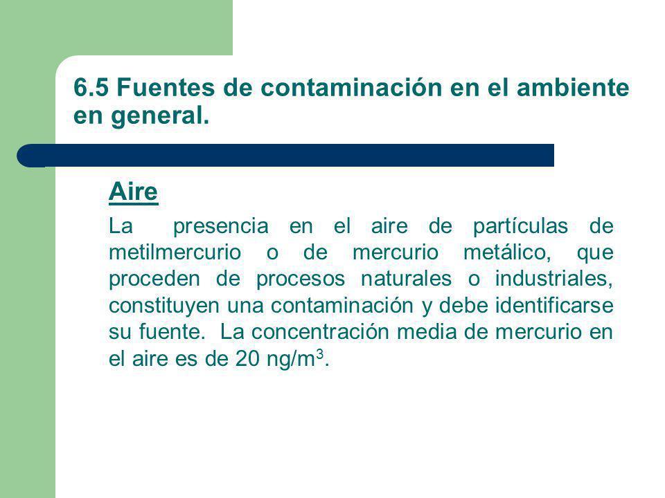 6.5 Fuentes de contaminación en el ambiente en general.