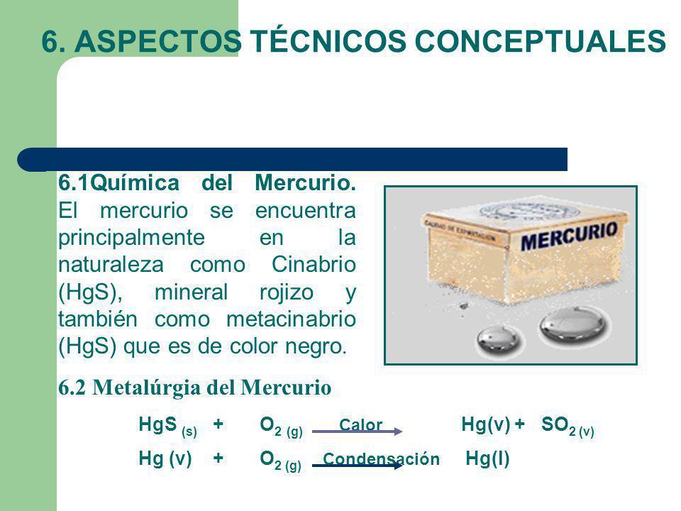 6. ASPECTOS TÉCNICOS CONCEPTUALES