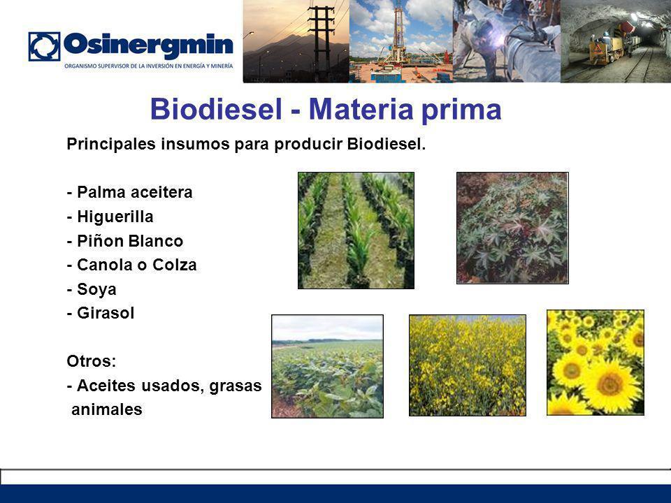 Biodiesel - Materia prima
