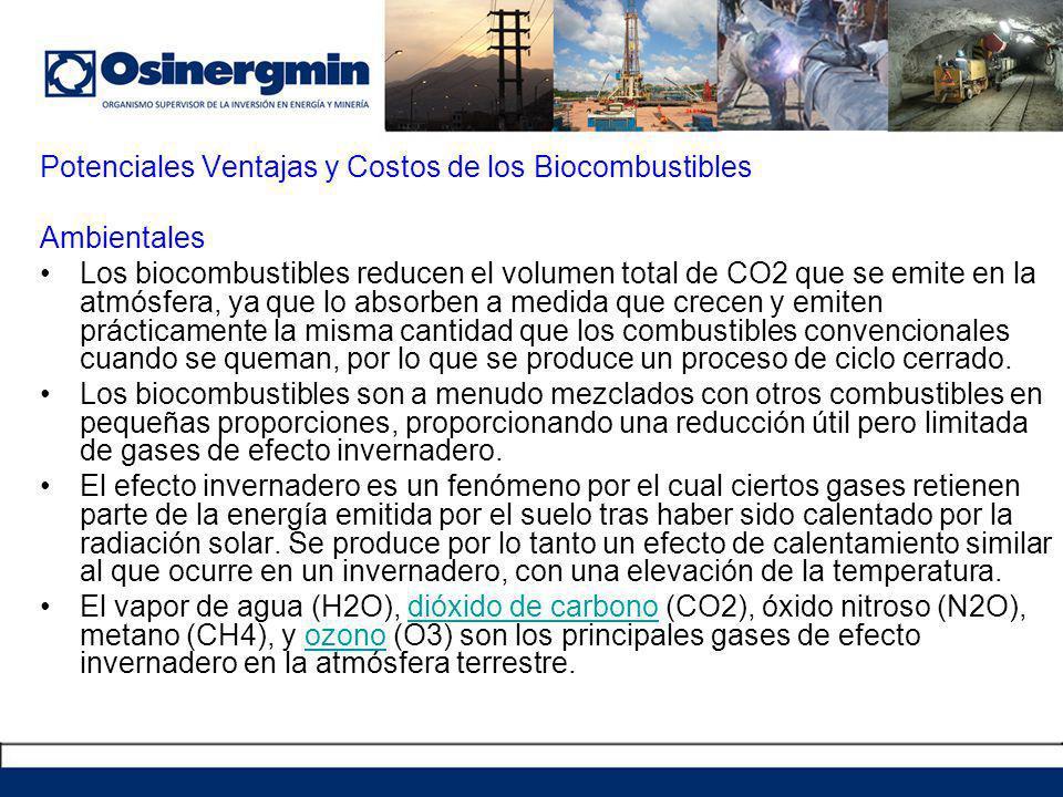 Potenciales Ventajas y Costos de los Biocombustibles