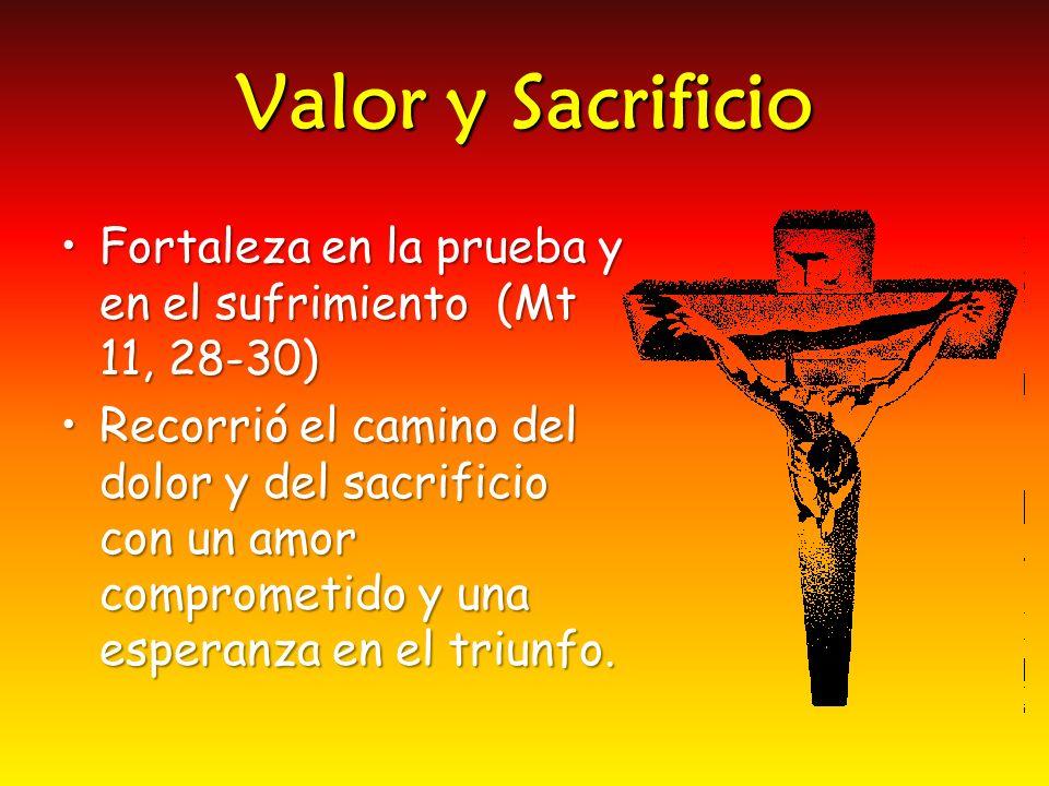 Valor y Sacrificio Fortaleza en la prueba y en el sufrimiento (Mt 11, 28-30)