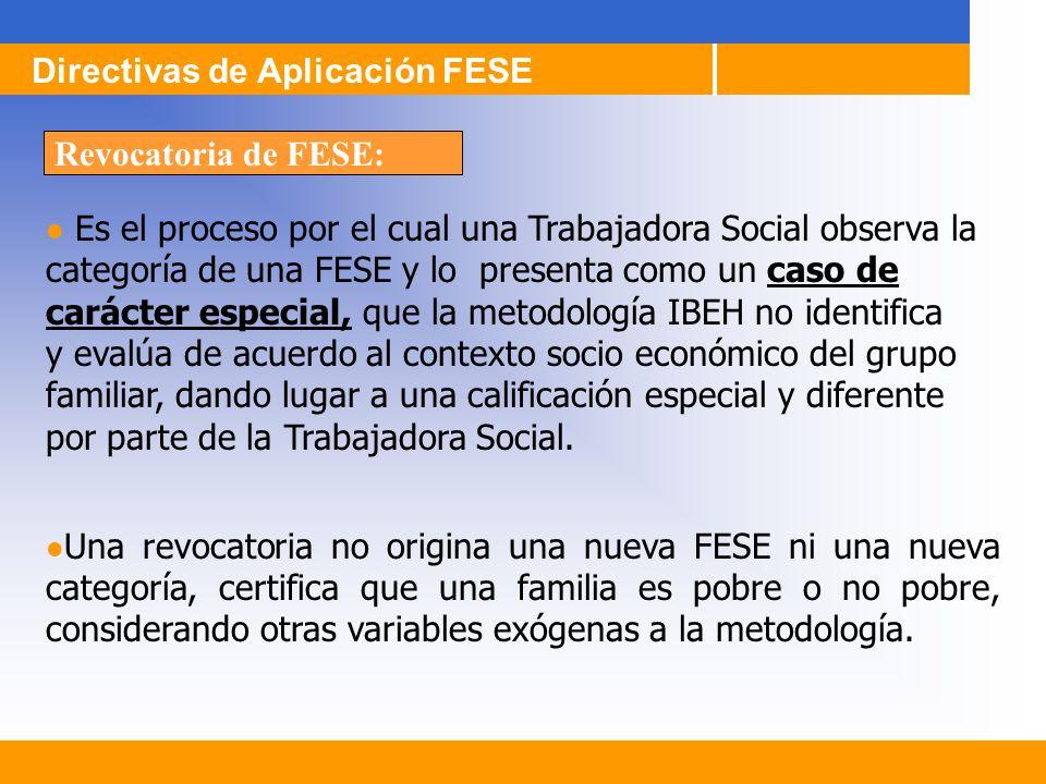 Directivas de Aplicación FESE