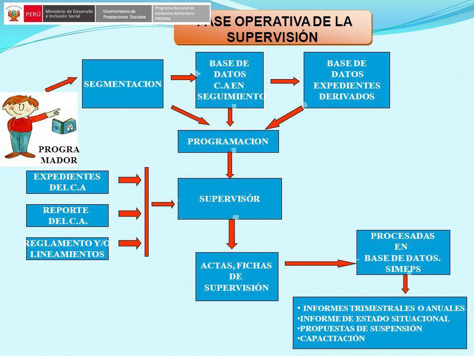 FASE OPERATIVA DE LA SUPERVISIÓN