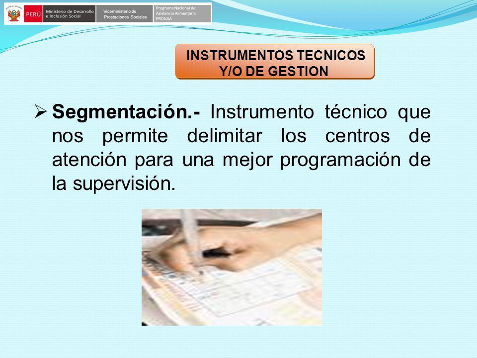 INSTRUMENTOS TECNICOS Y/O DE GESTION