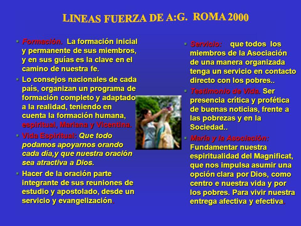 LINEAS FUERZA DE A:G. ROMA 2000