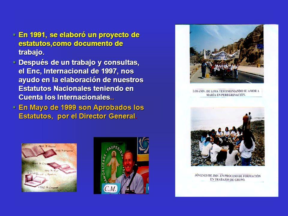 En 1991, se elaboró un proyecto de estatutos,como documento de trabajo.