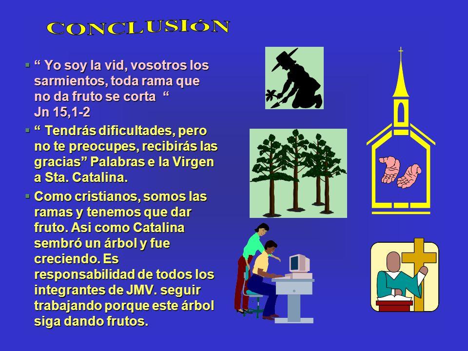 CONCLUSIÓN Yo soy la vid, vosotros los sarmientos, toda rama que no da fruto se corta Jn 15,1-2.