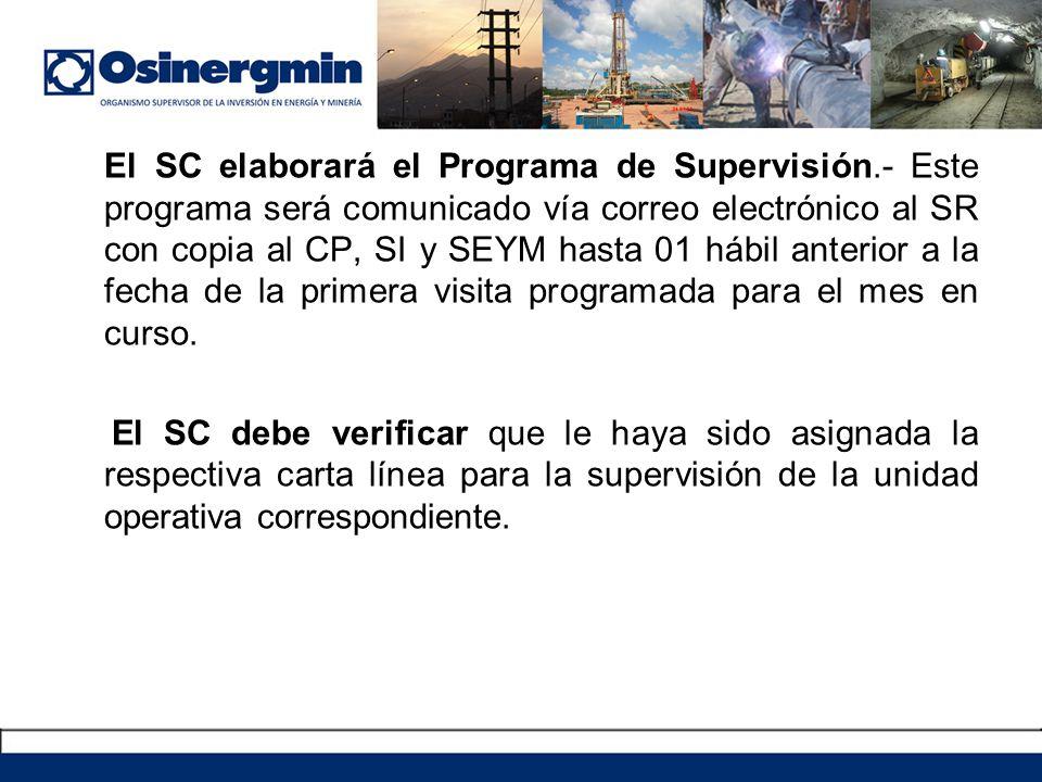 El SC elaborará el Programa de Supervisión