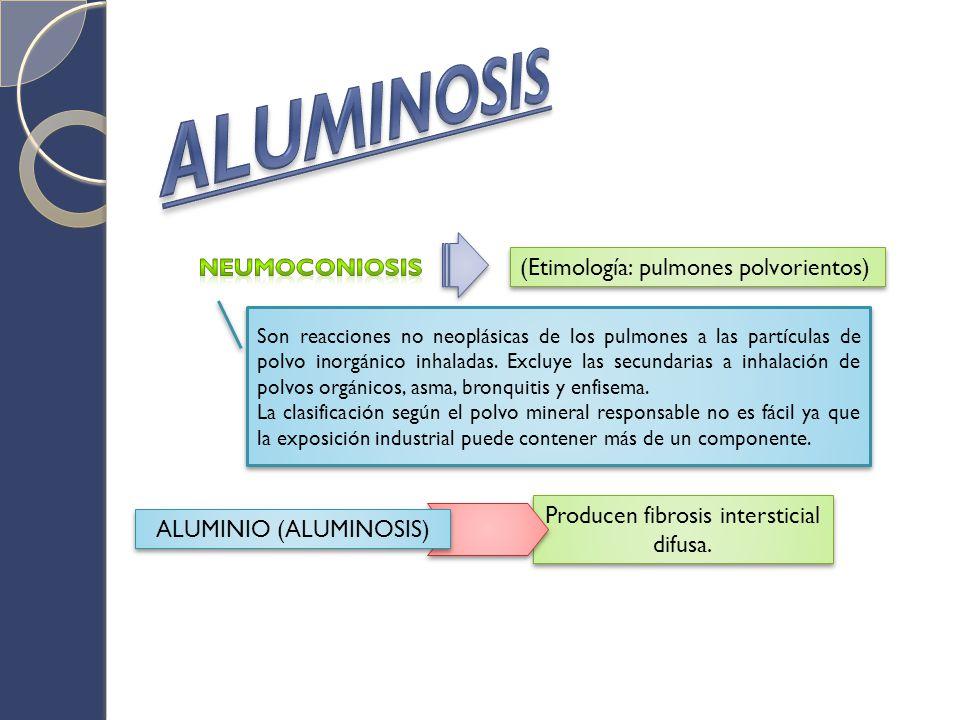 ALUMINOSIS NEUMOCONIOSIS (Etimología: pulmones polvorientos)
