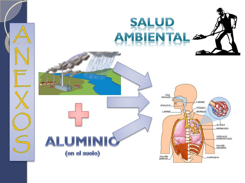 SALUD AMBIENTAL ANEXOS ALUMINIO (en el suelo)