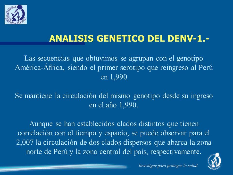 ANALISIS GENETICO DEL DENV-1.-
