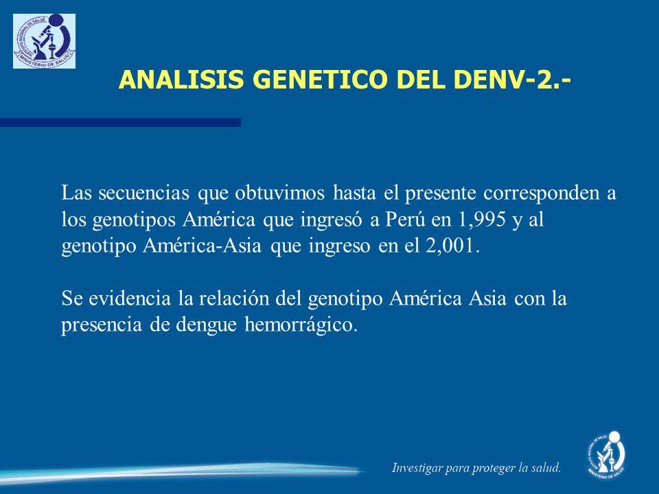 ANALISIS GENETICO DEL DENV-2.-