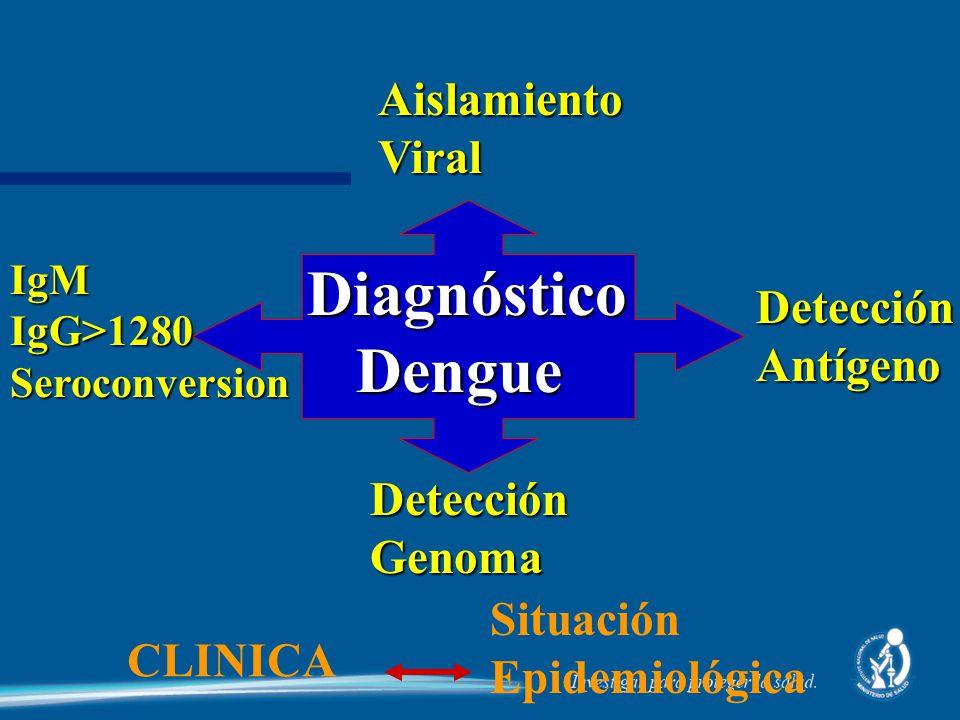 Diagnóstico Dengue Aislamiento Viral Detección Antígeno