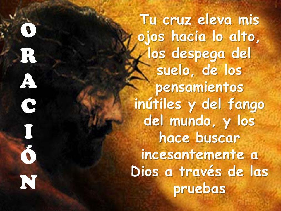 Tu cruz eleva mis ojos hacia lo alto, los despega del suelo, de los pensamientos inútiles y del fango del mundo, y los hace buscar incesantemente a Dios a través de las pruebas