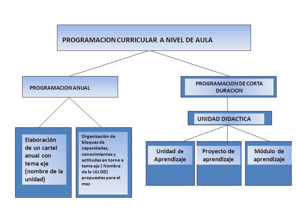 PROGRAMACION DE CORTA DURACION Proyecto de aprendizaje