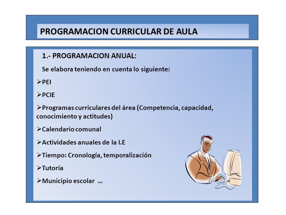 PROGRAMACION CURRICULAR DE AULA