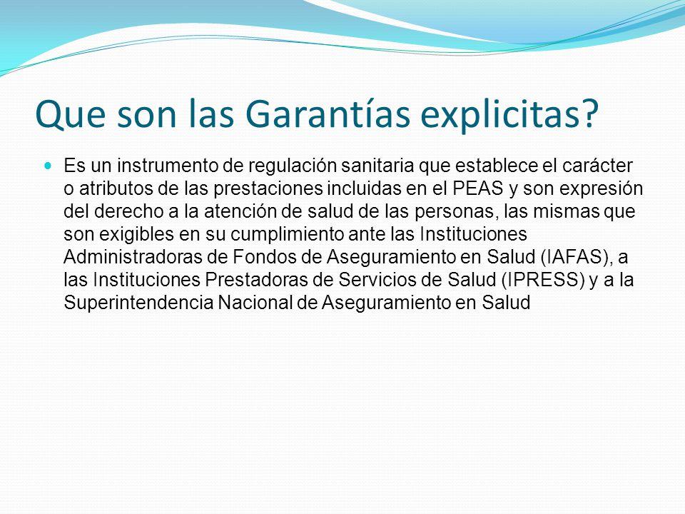 Que son las Garantías explicitas