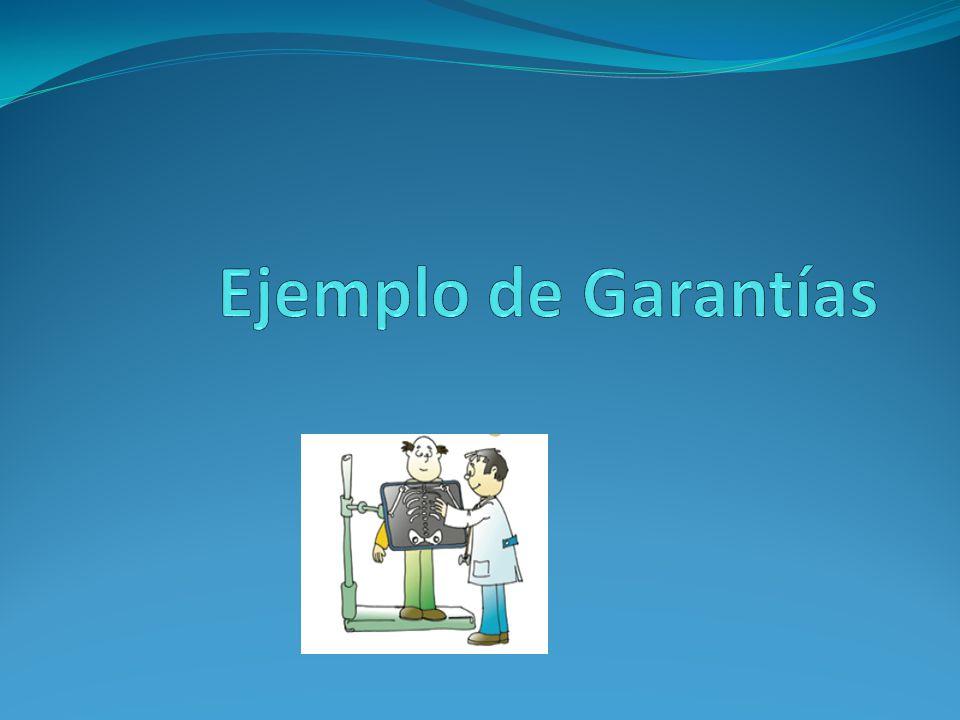 Ejemplo de Garantías